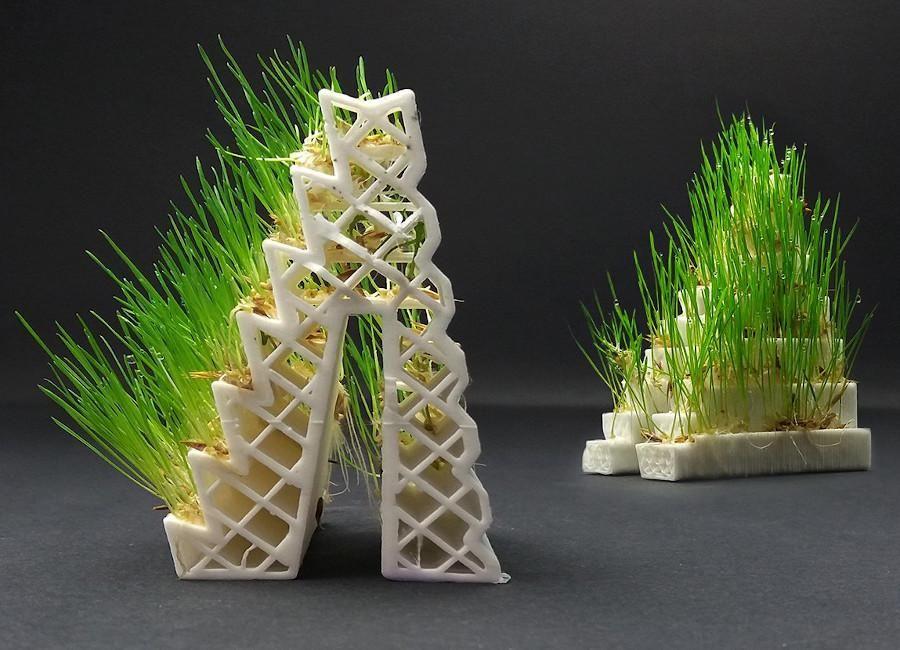 Growlay Filament kaufen